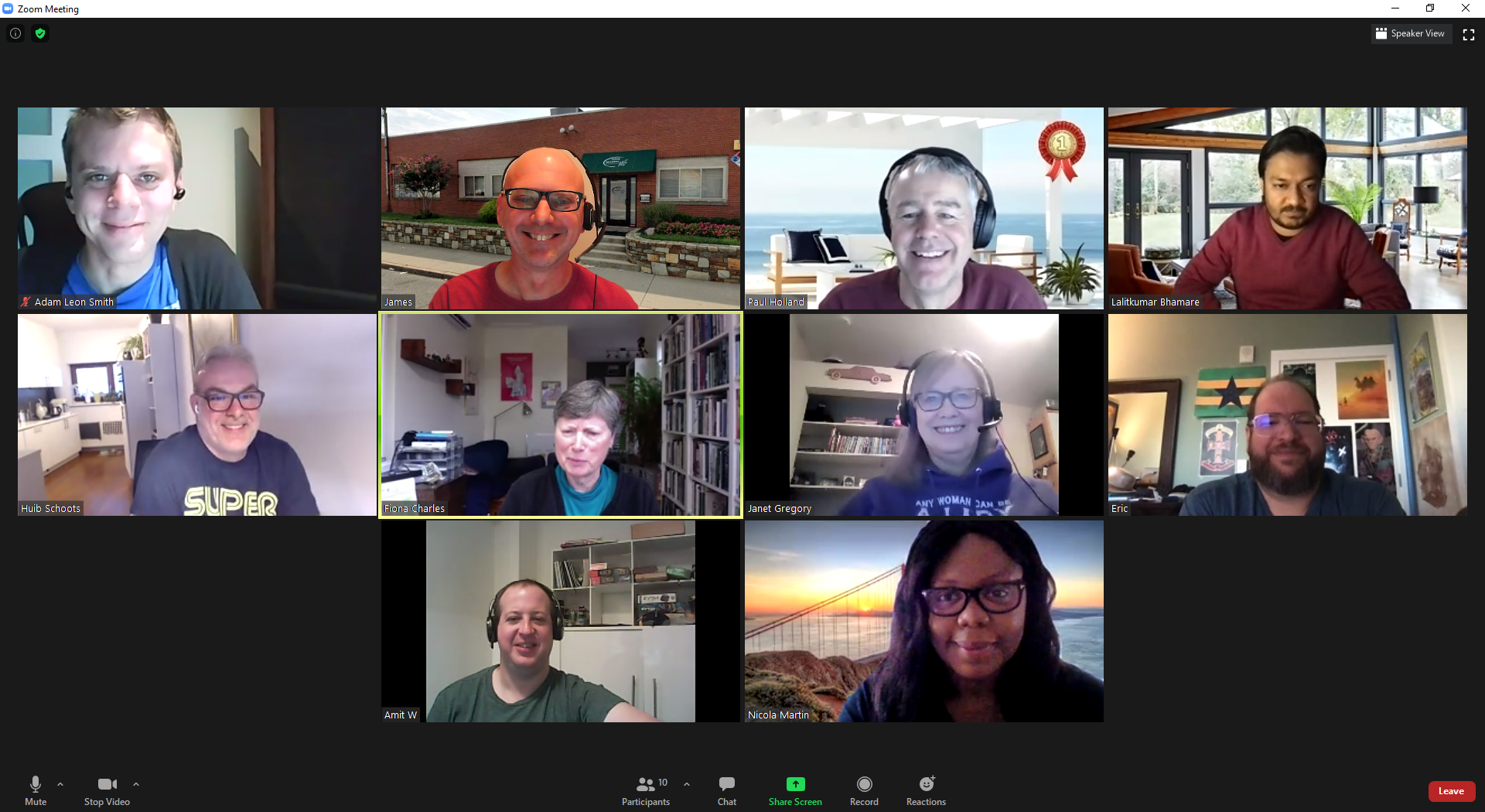 Screenshot of Zoom with all attendees